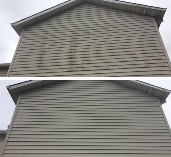 Exterior Siding Cleaning