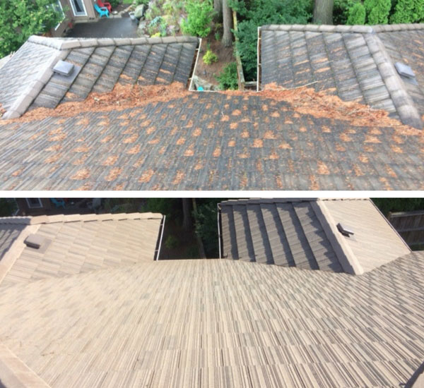 Roof Cleaning Service Referred Roof Cleaning